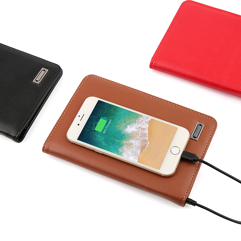 Passport Holder with Power Bank Built In
